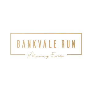 bankvale run client logo colour
