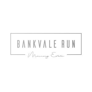 bankvale run client logo